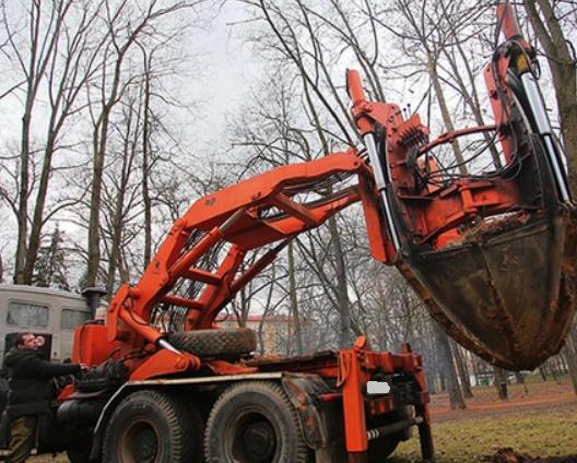 КАМАЗ для пересадки деревьев